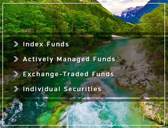 Investment Advising - Index funds, actively managed funds, exchange-traded funds, and individual securities